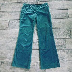 Women's Limited Brand Velvet Drew Pants